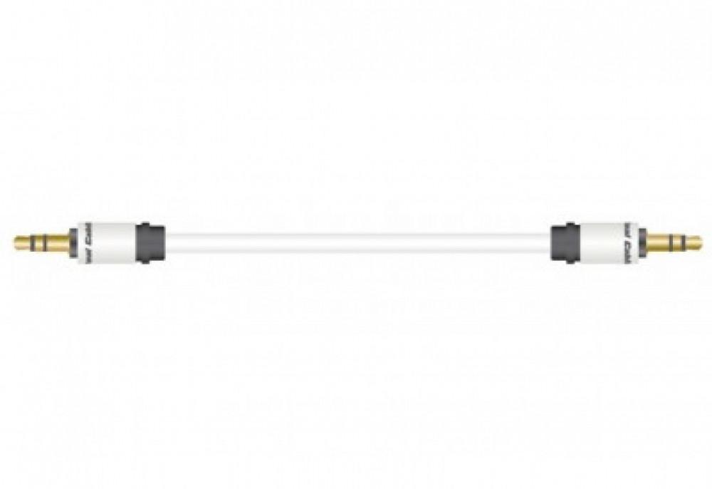 Real Cable Moniteur Jack-1
